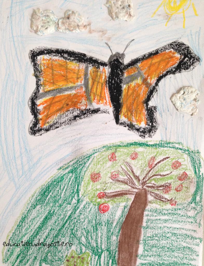 fluturele monarh educatie cu dragoste