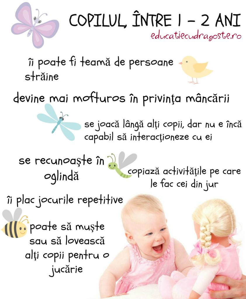 dezvoltarea copilului între 1-2 ani