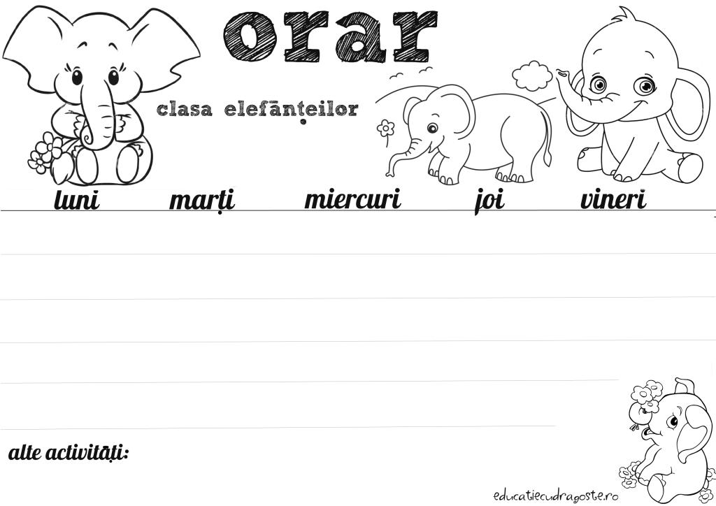 orar elefantei pentru scoala