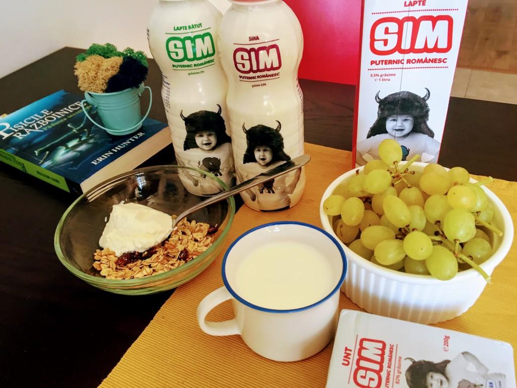 SIM 2